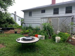 Fairhaven Guesthouse-backyard opens into Meade Park