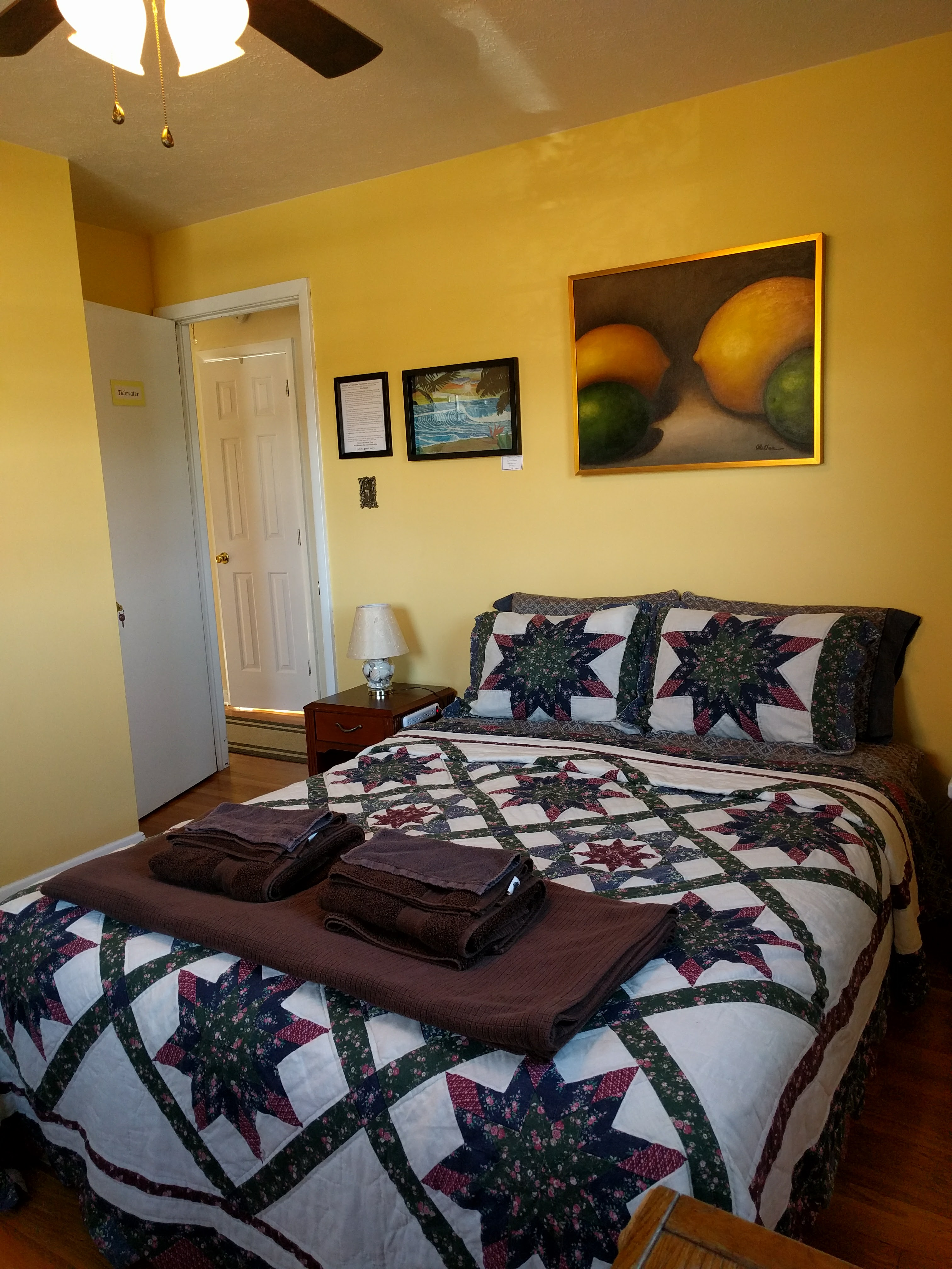 tidewater-room-at-fairhaven-guesthouse-charlottesville-va-portrait-4
